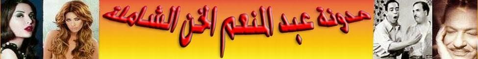 مدونة عبد المنعم الخن الشاملة